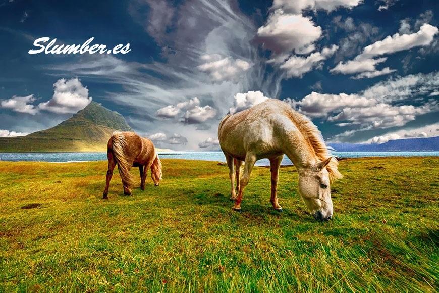 significado de soñar con un caballo